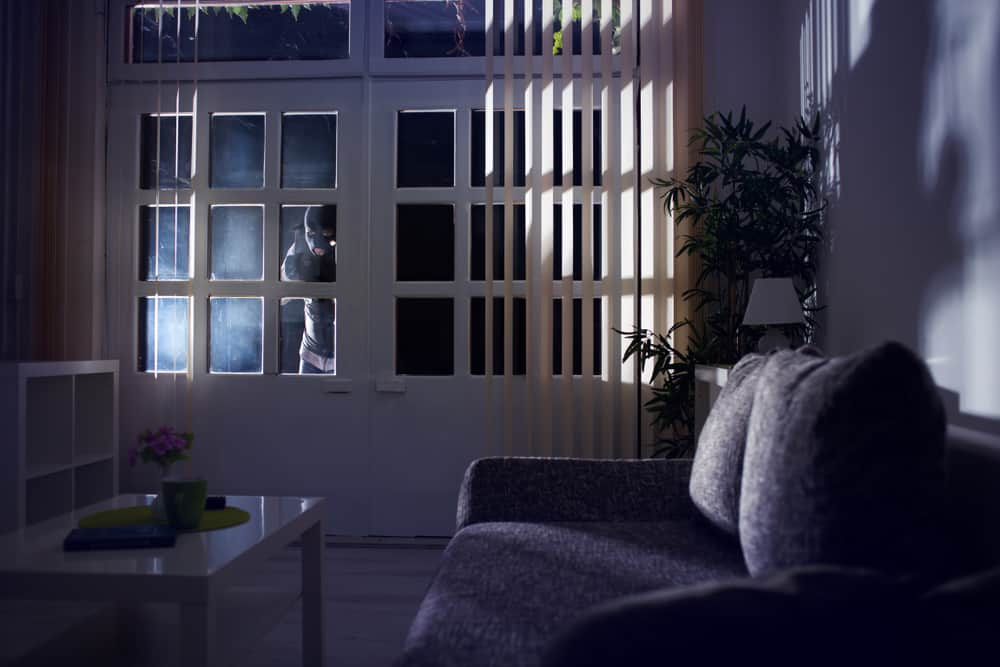 Burglar peering into home
